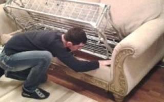 Почему скрипит новый диван?