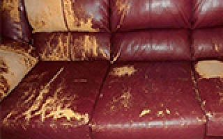 Как реставрировать кожаный диван?